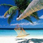 """Quali alberghi hanno aderito alla proposta """"buoni vacanze""""?"""