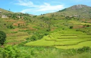 Vacanze in Madagascar