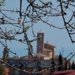 Vacanze nelle Marche: benvenuti al Country House Chiaraluce