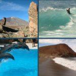 Vacanze a Tenerife: mare, sole e divertimento