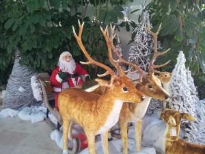 Buon-Natale-Mena-Santoro