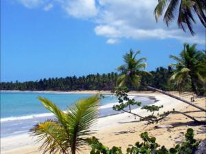 Caraibi-Playa-Las-Terrenas