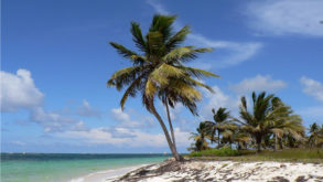 Dall'Italia ai Caraibi. Investire costruendo un villaggio: la storia di David