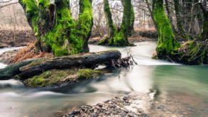 Vacanze sostenibili in Spagna: 5 mete green